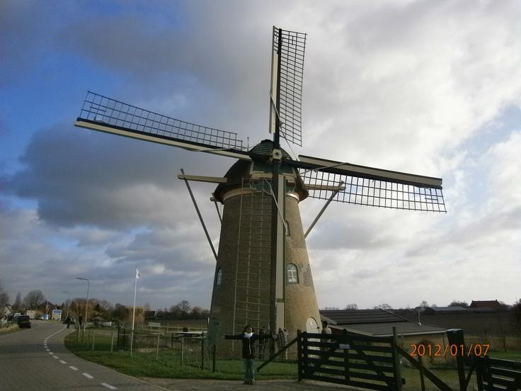 Goidschalxoord, Oud-Beijerland, Nederland.