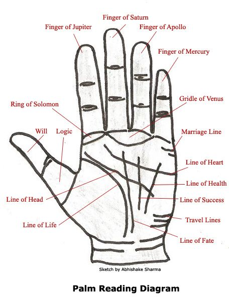 Palm Reading Diagram. we're going to have to look through this on Skype together, because apparently I have no health or wealth and I'm not getting married.