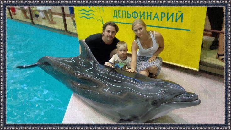 Геленджикский дельфинарий | минимум монтажа