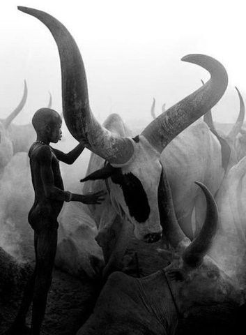 Sudan's Dinka: Portrait of a People