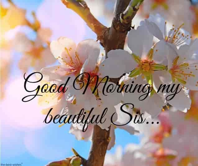 120 Lovely Good Morning Wishes And Greetings For Sister Good Morning Sister Images Good Morning Sister Quotes Good Morning Sister