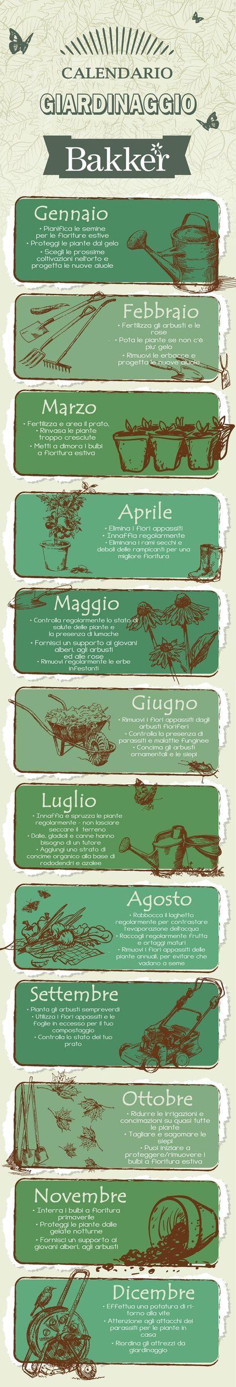 Infografica - pratici consigli di giardinaggio mese per mese - #Calendario di #giardinaggio #Bakker - In giardino con Bakker