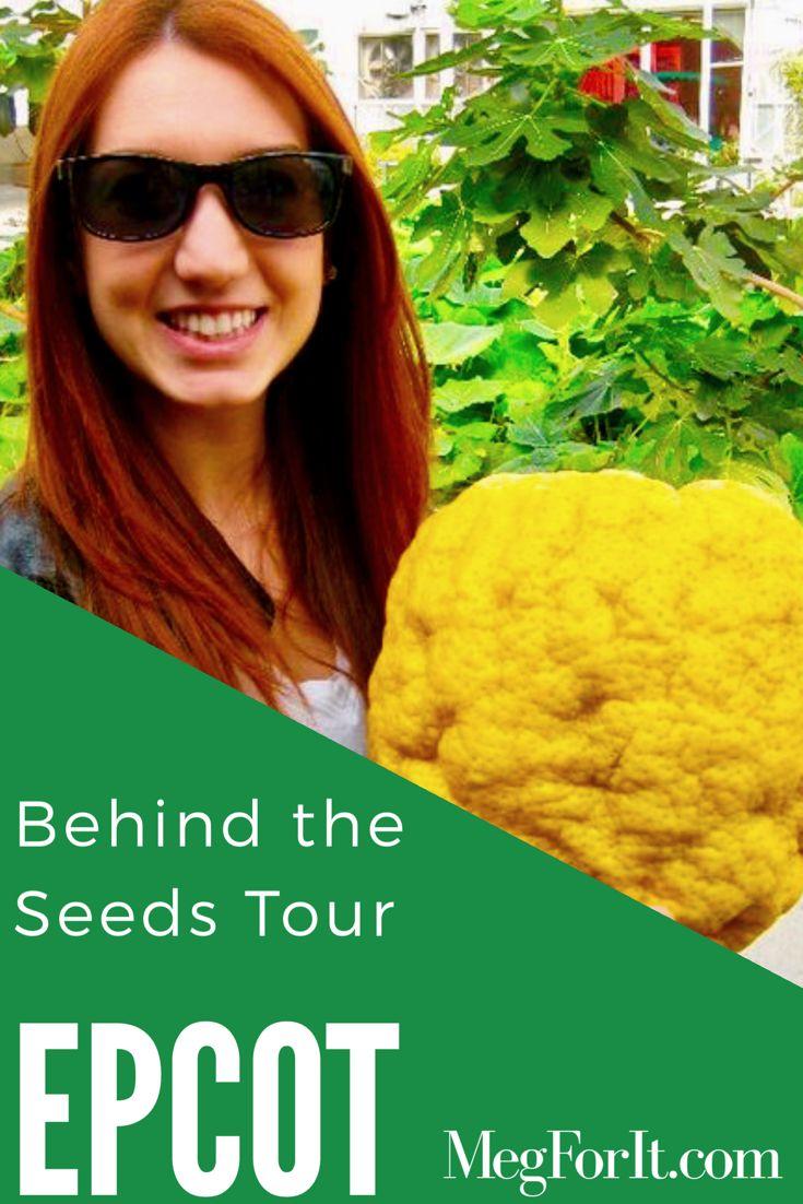 EPCOT Behind the Seeds, secret tour!