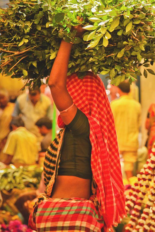 Life in Calcutta - India