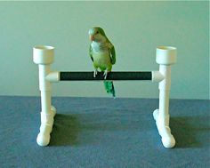 TABLETOP parrot BIRD PERCH stand play gym with water and food bowls