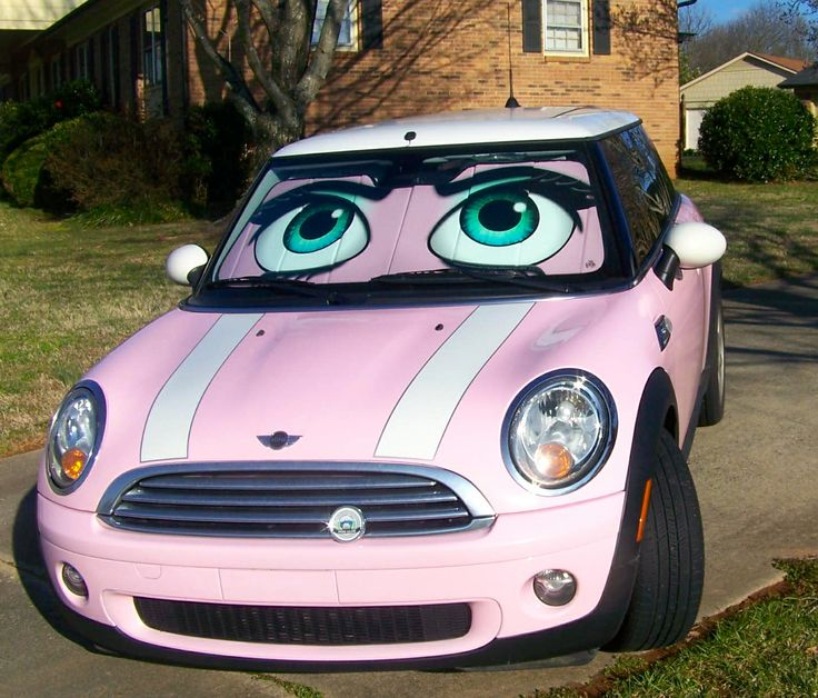 Cars Windshield Shade Eyes