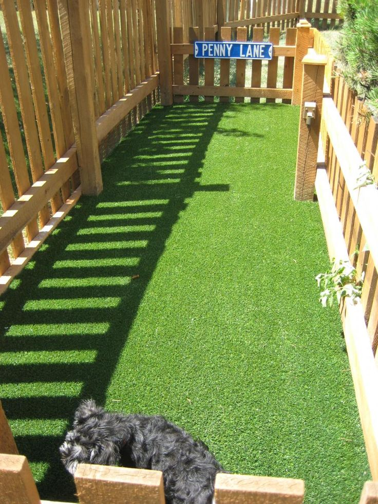 25 Best Ideas About Artificial Grass For Dogs On