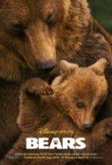 Bears izle, Bears Tr Altyazılı izle, Bears Belgesel Full İzle dünyanın en soğuk kanlı hayvanlarının nasıl bir yaşam sürdüklerini merak ediyor musunuz? Ayıların Alaska ki yaşam mücadelelerini ve yok olma tehlikelerini anlatan harika bir belgesel.