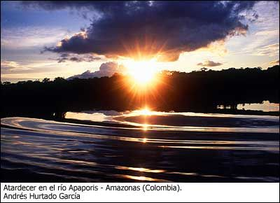 Amazonas- Colombia