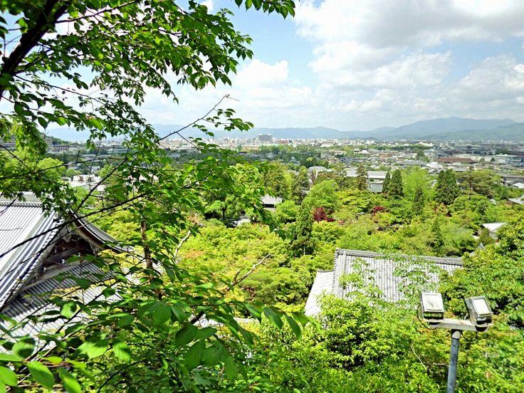 View from Pagoda at Eikando May 2017