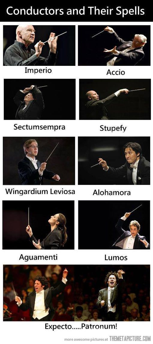 This combines to of my favorite things: Harry Potter and Music.