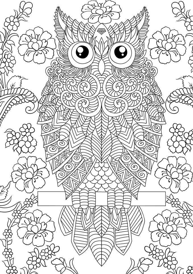 1000 images about buhos para colorear on pinterest owl coloring pages owl and zentangle. Black Bedroom Furniture Sets. Home Design Ideas