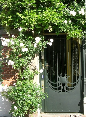 Jugendstil garden door, The Hague
