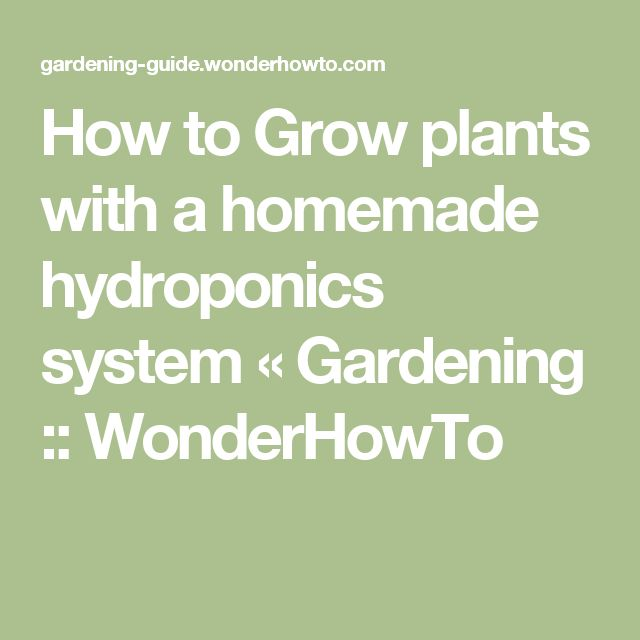 How to Grow plants with a homemade hydroponics system « Gardening :: WonderHowTo