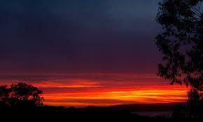 Night Summer sky. #seasonsforgrowth
