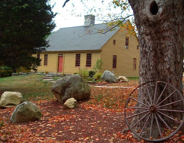 Historic House Blog » Historic House + Historic Tree = Marketability?