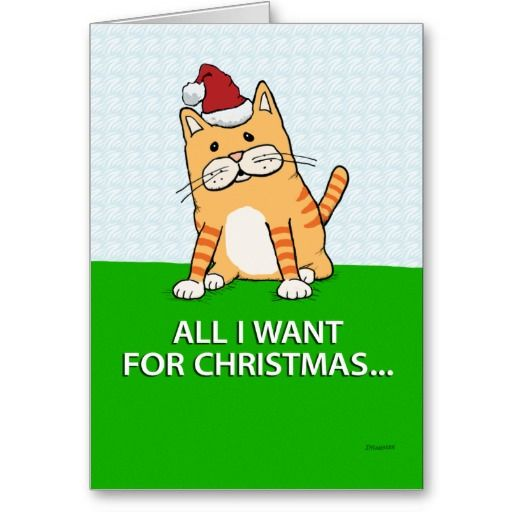 Exceptional Funny Cat Christmas Card