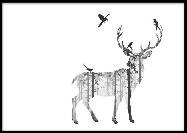 Affisch med hjort och fåglar. Svartvita posters med djur och natur. Gör en tavelvägg med svartvita tavlor på djur och insekter.