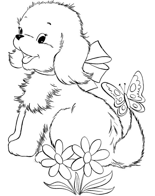 i have download cute puppy and butterfly beatifull coloring page