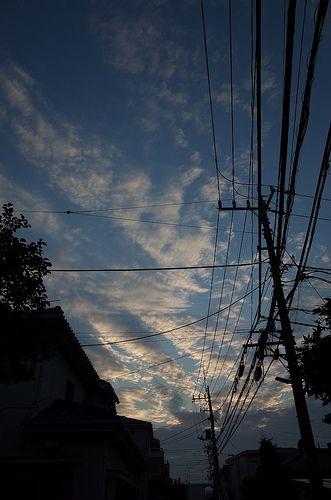 電線 (The electric wires)