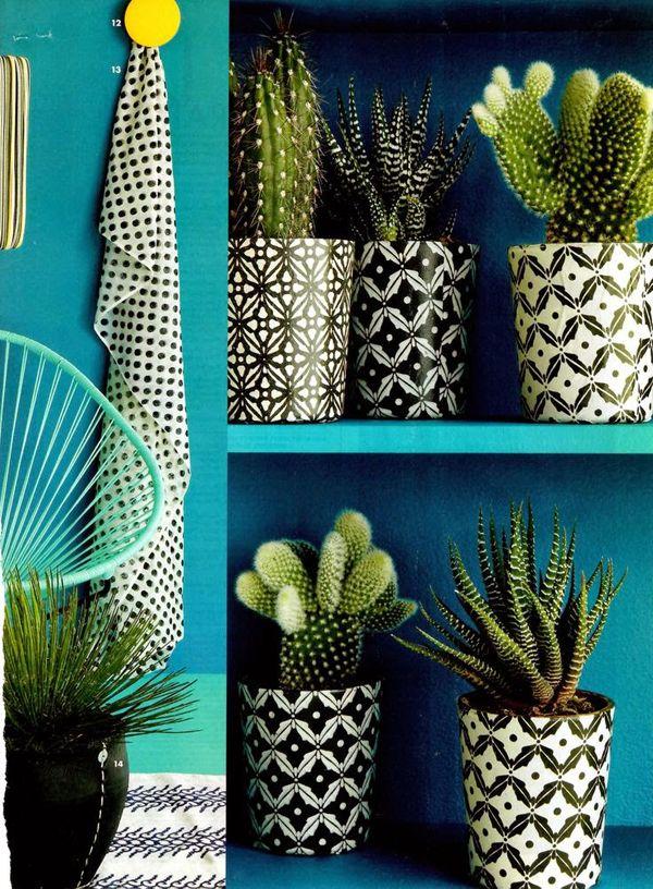 Airy Interior With Tropical Ideas   Home Design And Interior cactus pots