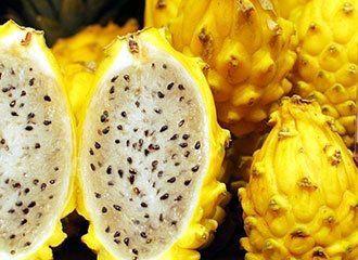 tn_2949_yellow-dragon-fruit-1398999666.jpg