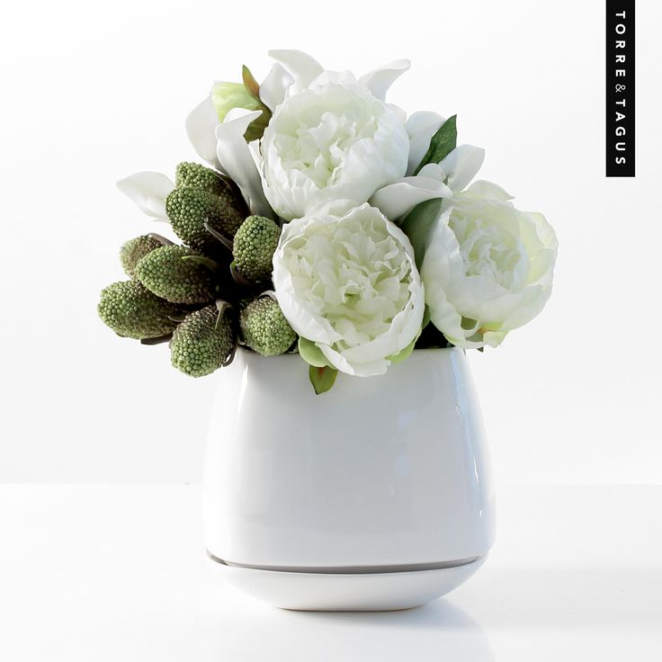 Nothing brings in the freshness of spring like cool white Peonies in a stylish and practical Mod Cube Planter. #TorreAndTagus #Peonies #Planter #HomeDecor #AprilShowers #MayFlowers  www.torretagus.com