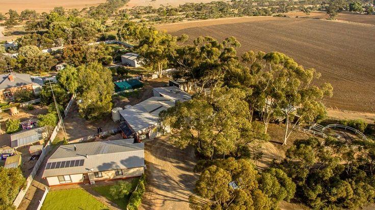 Fantastic Horse Training Facilities  #SouthAustralia #Bute #ForSale #HorseProperty #RealEstate