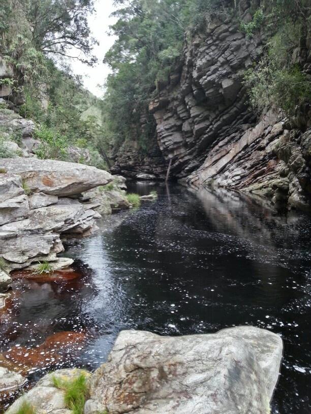 Drupkelder Forest Hike in knysna. Amazing!