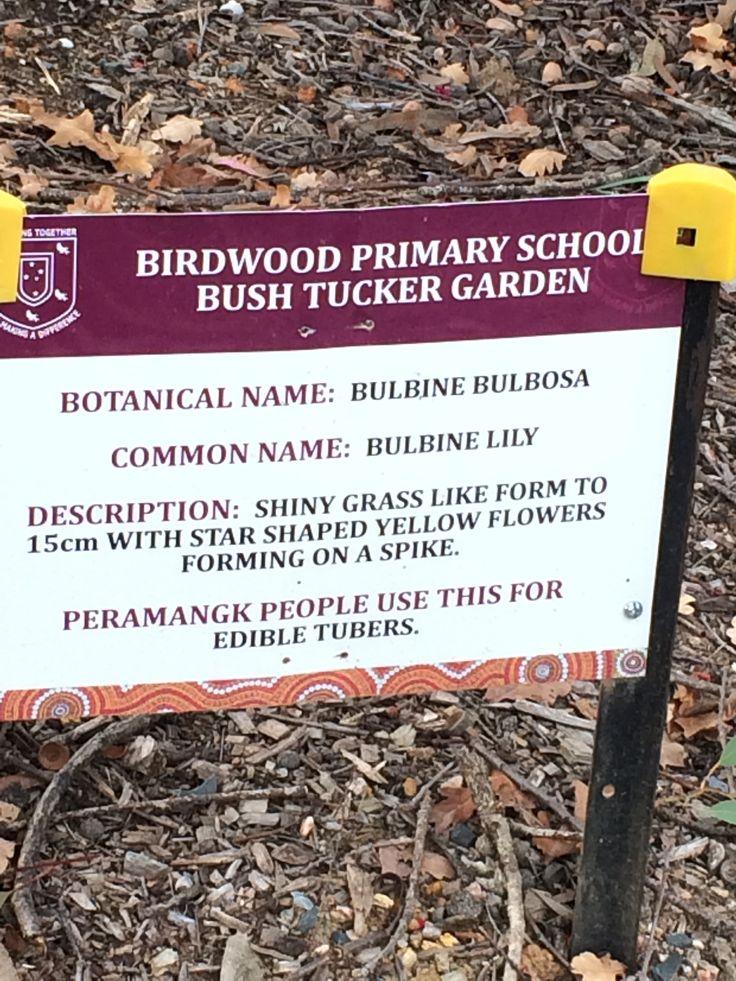 BPS Bush tucker garden sign