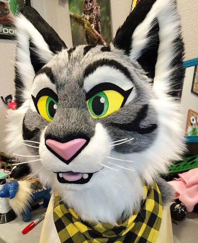 Don't hug cacti fursuit cat