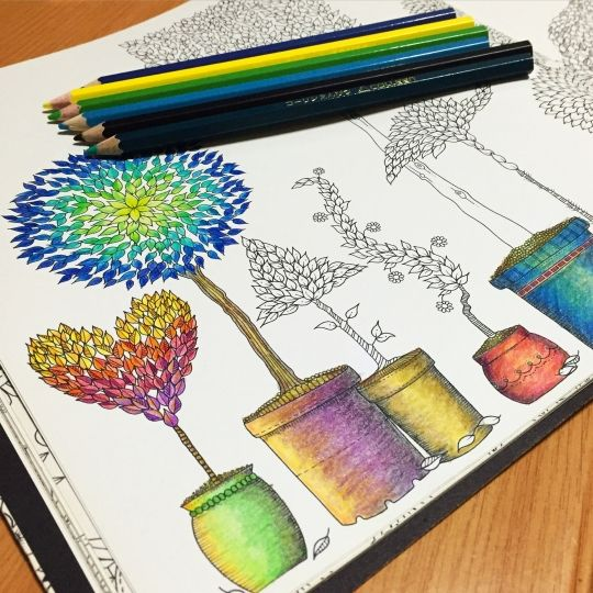 Coloring Books For Adults In Singapore 267 Best Secret Garden Images On Pinterest