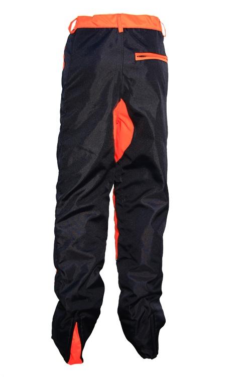 Pants, back