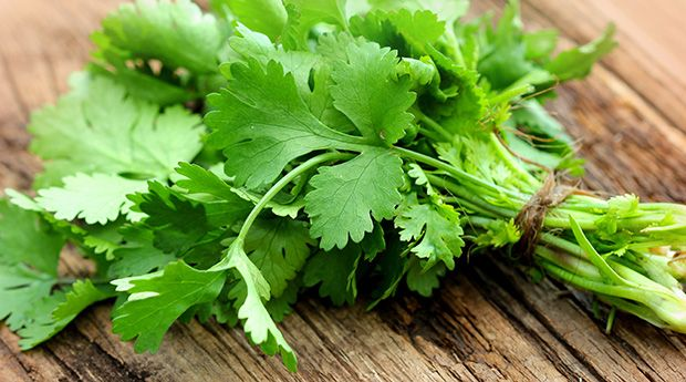 """Often referred to as a """"superherb,"""" cilantro packs a big nutritional punch. Get the scoop on the health benefits of cilantro (including for detox!)"""