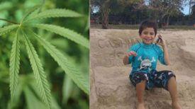 Un enfant autiste prononce ces premiers mots après seulement 2 jours de régime à l'huile de cannabis !!
