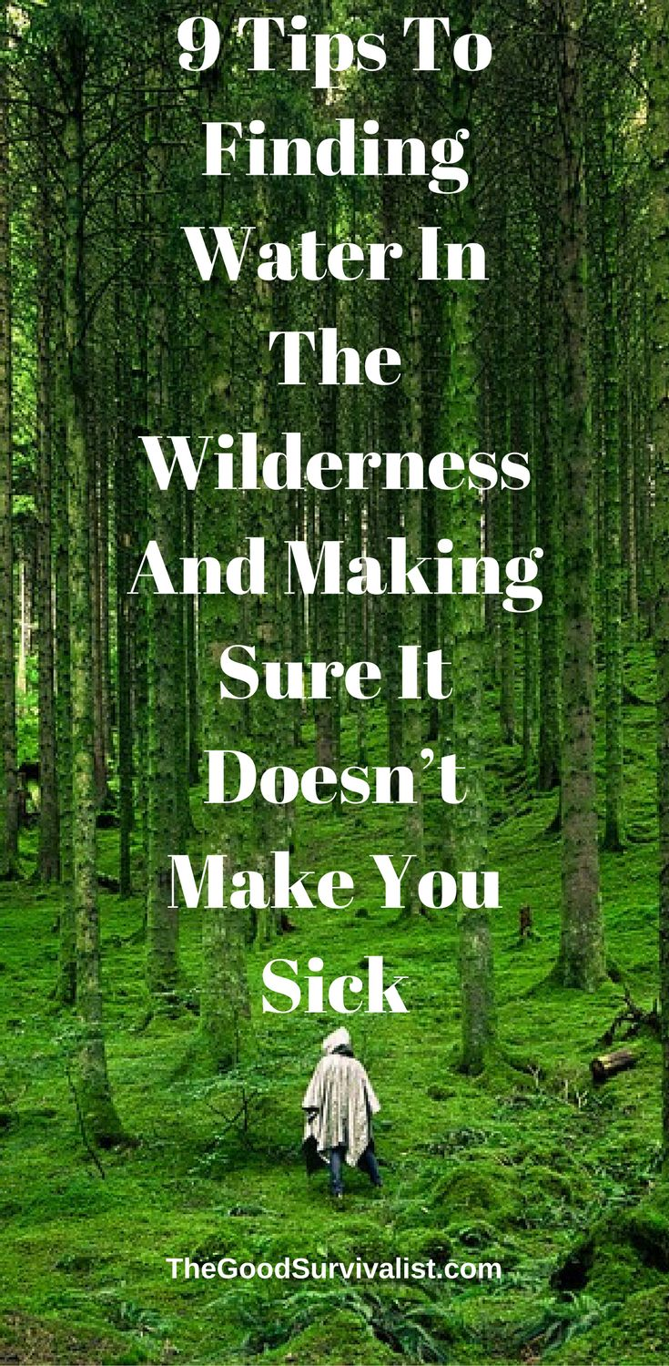 9 Tips To Finding Water In The Wilderness And Making Sure It Doesn't Make You Sick  http://www.thegoodsurvivalist.com/9-tips-to-finding-water-in-the-wilderness-and-making-sure-it-doesnt-make-you-sick/