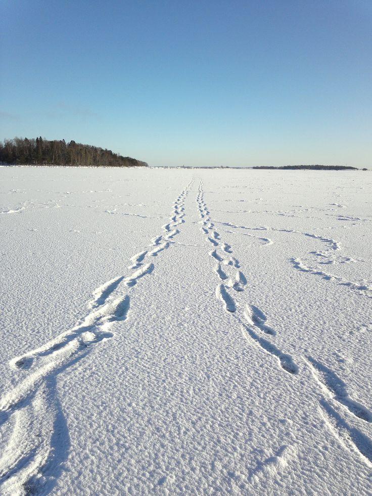 Meren jäällä