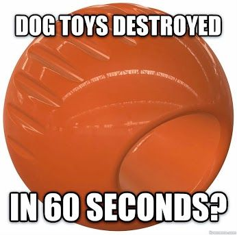 Is your Dog an Aggressive chewer?  Go Bionic. Bionic Dog Toys are nearly indestructible. These ultra durable toys are made from Bionic rubber, & come in Ball, Bone and Stick shapes. Great for dogs that love to chew!  #dogtoys
