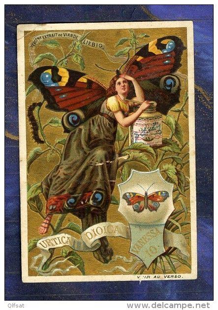 Chromo Liebig S265 Femme Papillon Butterfly Girl Farfalle E Donne Vanessa Urtica - Liebig