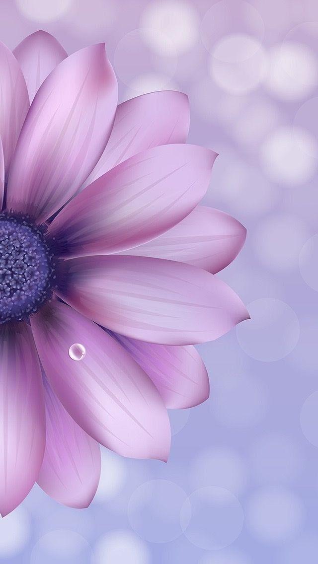 Duvar Kagidi Iphone Purple Wallpaper Phone Flower Iphone