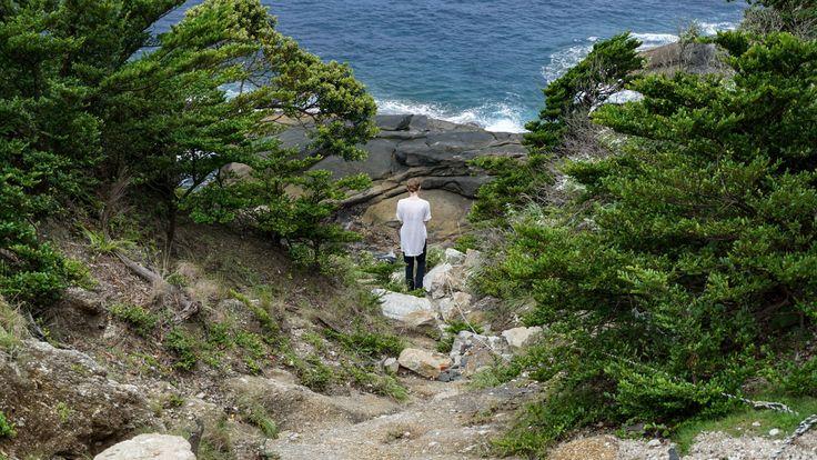 Rock Walkway near Lighthouse Yakushima