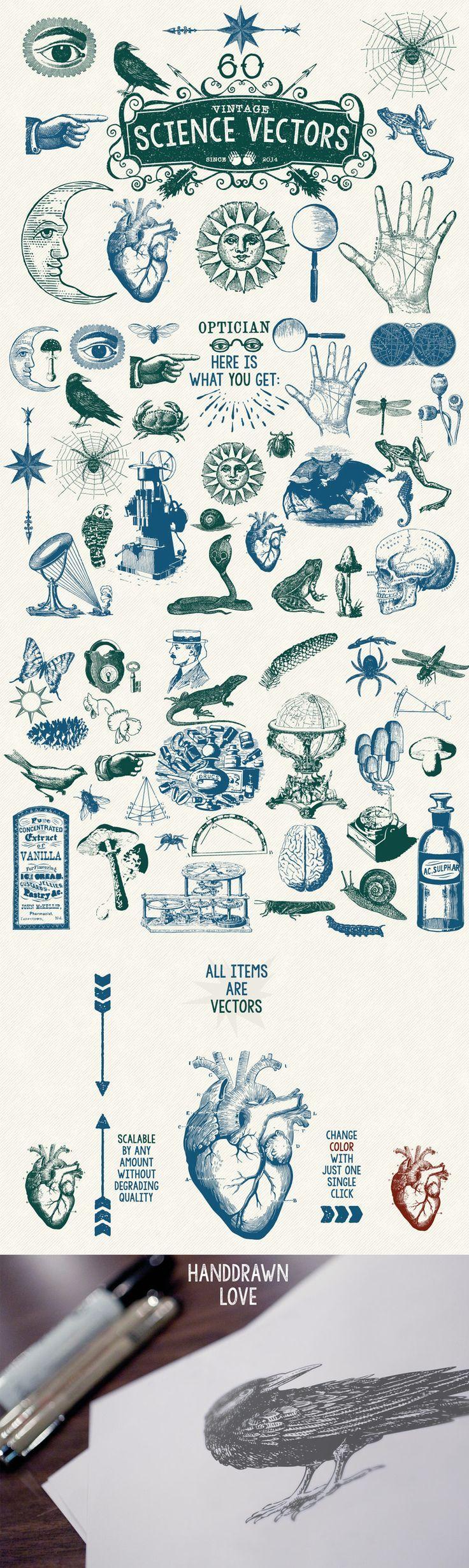 Typography  60 Vintage Science Vectors by MouseMade | The Comprehensive Creative Vectors Bu
