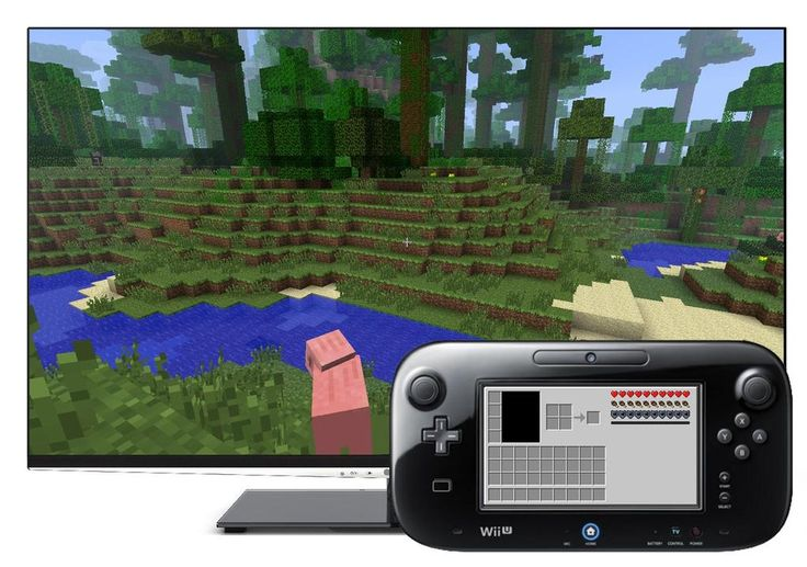 Minecraft on Wii U? Well.... That's different.
