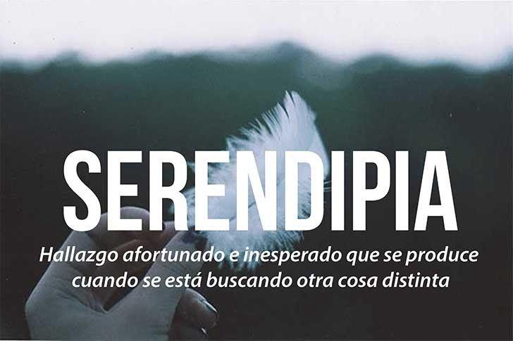 Make Existe Gracias A La Serendipia O Como Dicen En Mi