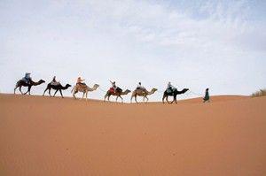 Méharée désert marocain