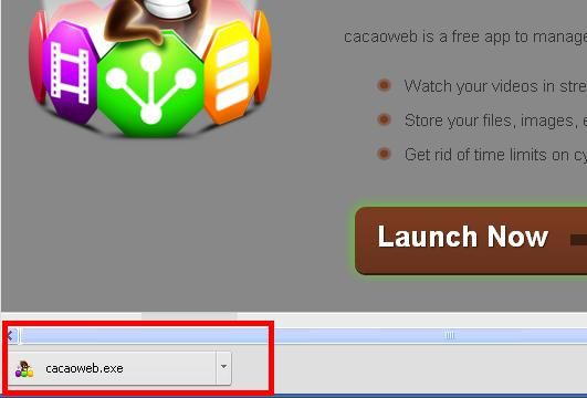 cacaoweb - Download instructions