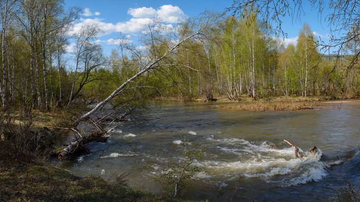 Askiz River. Subtaiga district in the foothills of the Kuznetsk Alatau.