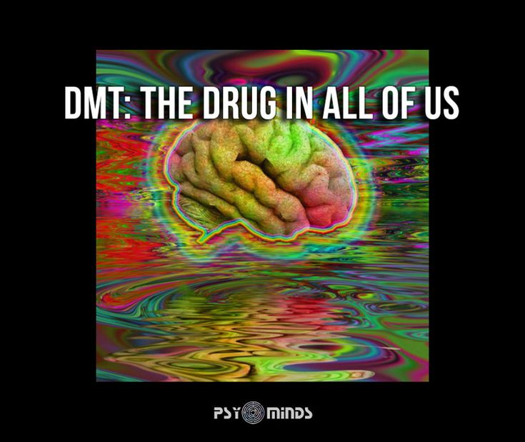 DMT: The Drug In All of Us - @psyminds17