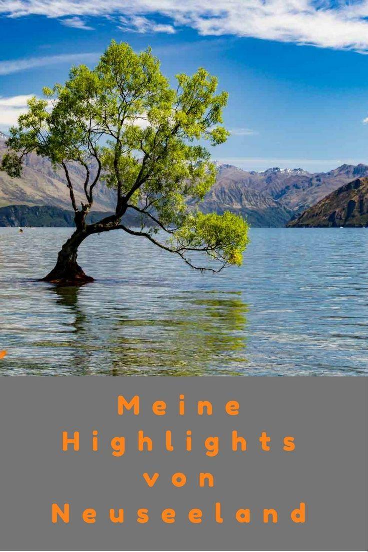 Meine 5 Highlights nach 5 Wochen Neuseeland Wanderung, Abel Tasman, Tongariro Alpine Crossing, Whale Watching