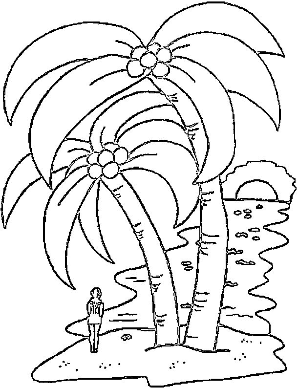 palm tree coloring pages - Palm Tree Coloring Pages Print